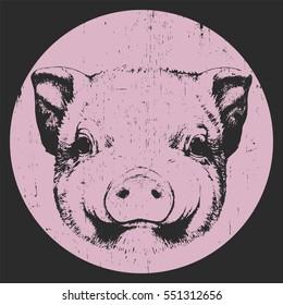Portrait of Piggy. Hand drawn illustration. Vector