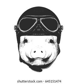 Portrait of Piggy with Vintage Helmet. Vector