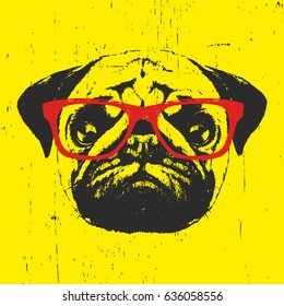 Portrait of Pug Dog with glasses. Hand drawn illustration. T-shirt design.Vector