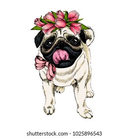 Portrait of pug dog wearing tulip crown. Welcome spring. Hand drawn colored vector illustration. Engraved detailed art. Good for Easter greeting card, poster, banner, flyer, advertisement