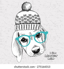 Portrait of a puppy Beagle in a knitted hat and glasses. Vector Image.