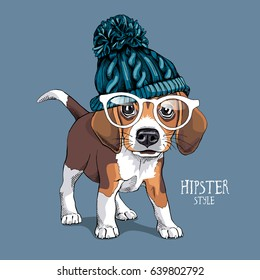 Portrait of a Puppy Beagle in a Knitted hipster hat and glasses. Vector illustration.