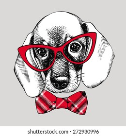 Portrait of a puppy beagle with red checkered tie and glasses on a gray background. Vector illustration.