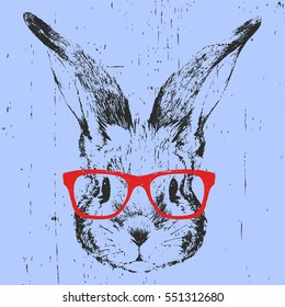 Portrait of Rabbit with glasses. Hand drawn illustration. Vector