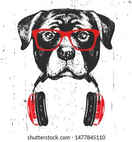 Portrait of Rottweiler with glasses and headphones. Hand-drawn illustration.  Vector