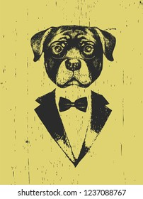 Portrait of Rottweiler in suit, hand-drawn illustration, vector