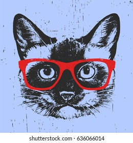 Portrait of Siamese Cat with glasses. Hand drawn illustration. T-shirt design. Vector