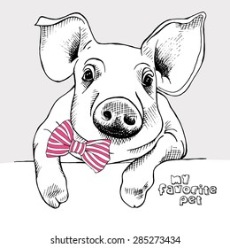 Portrait of a small pig with a pink striped tie. Vector illustration.