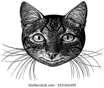 Portrait of a smiling cat. Art detailed editable illustration. Vector vintage engraving. Isolated on white background. 8 EPS