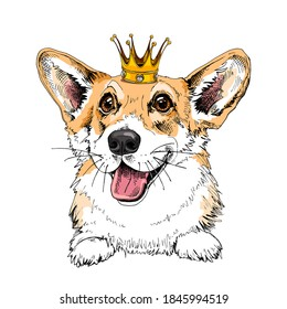 Portrait of the smiling funny Corgi dog in the Crown. Humor card, t-shirt composition, hand drawn style print. Vector illustration.