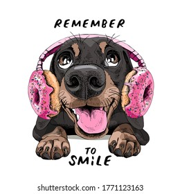 Portrait of a smiling funny Dachshund dog in the Headphones with pink Donuts. Humor card, t-shirt composition, hand drawn style print. Vector illustration.