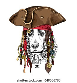 Portrait of a Spaniel dog in Pirate hat, bandana and with a dreadlocks. Vector illustration.