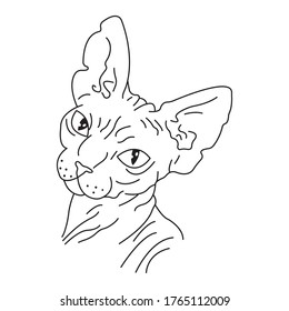 Portrait of a sphynx cat drawn in the style of minimalism. Design suitable for logo, mascot, icons, albums, tattoos, banners, souvenirs, print on t-shirts, symbol of an exotic animal. Isolated vector