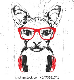 Portrait of Sphynx Cat with glasses and headphones. Hand-drawn illustration. T-shirt design. Vector