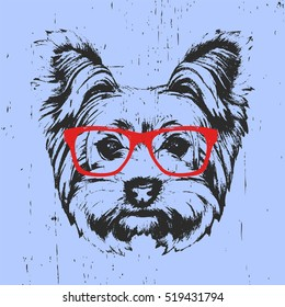 Portrait of Yorkshire Terrier Dog with glasses. Hand-drawn illustration. T-shirt design. Vector