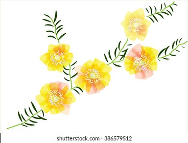 Portulaca flower cute yellow flowers leaves stock vector royalty portulaca flower cute yellow flowers with leaves for object or background cardvector illustration mightylinksfo
