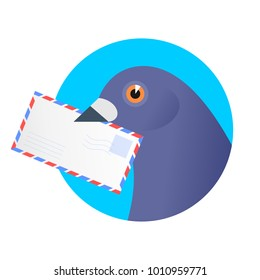 A post pigeon with an envelope in the beak. Flat vector illustration of a homing-pigeon carring avia letter. Receiving a correspondence, postal, bird, dove mail concept isolated on white background.