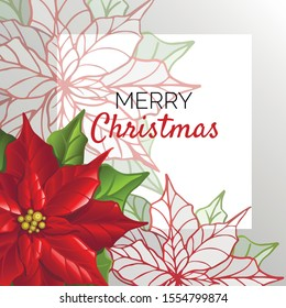 Postcard Christmas template with poinsettia flowers. Floral background. Stylized poinsettia. Vector illustration.