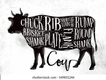 Poster beef cutting scheme lettering chuck, brisket, shank, rib, plate, flank, sirloin, shortloin, rump, round, shank in vintage style drawing on dirty paper background