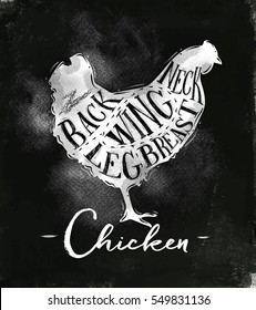Poster chicken cutting scheme lettering neck, back, wing, breast, leg in vintage style drawing with chalk on chalkboard background