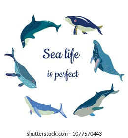 Poster with cute whales and quote - nice design, vector graphic illustration