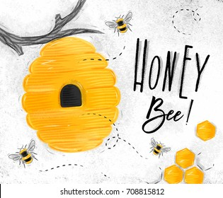 Poster illustrated beehive, honeycombs lettering honey bee drawing on dirty paper background