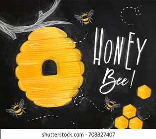 Poster illustrated beehive, honeycombs lettering honey bee drawing on chalk background