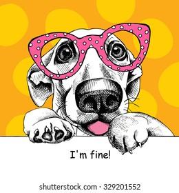海报与有趣的狗与黄色背景粉红色眼镜的图像。 矢量插图。