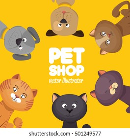 poster pet shop cute cats yellow background