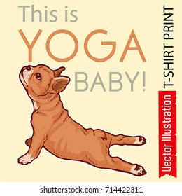 Poster - this is yoga baby. Advertising studio yoga banner, leaflet, flyer. Puppy French bulldog makes snake pose. Little puppy does yoga bhujangasana. Isolated vector illustration on white background