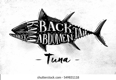 Poster tuna cutting scheme lettering cheek, kama, abdomen, back, tail in vintage style drawing on dirty paper background