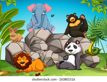Poster of wild animals sitting together