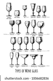 Poster with wine glass types infographics. Illustration in ink hand drawn style.