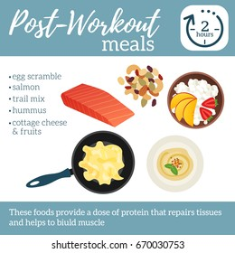 Post-workout meals poster. Best food after sport training. Vector illustration healthy lifestyle. Hummus, egg scramble, cottage cheese with fruits and trail mix on white isolated background.