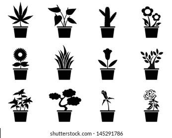 pot plants icons set