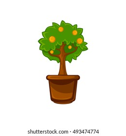 Pot room plant with flower and leaves . Vector illustration. Isolated on white.