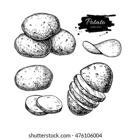 Potato drawing set. Vector Isolated potatoes heap, sliced pieces and chips. Vegetable engraved style illustration. Detailed vegetarian food sketch. Farm market product. Great for label, banner, poster
