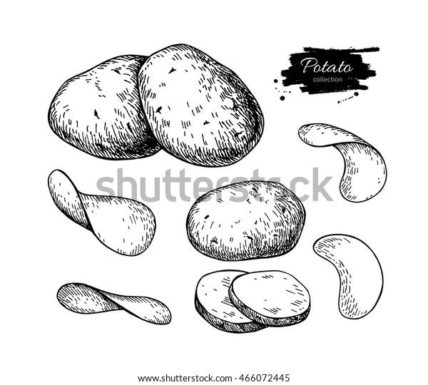 Рисунок картофель горох помидор столица восток дорога завод ракета