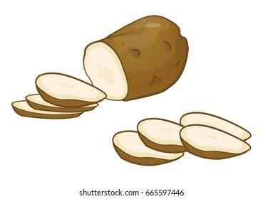 Potato vector