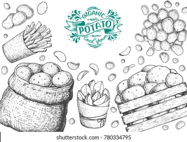 Potato vector illustration. Box and bag of potatoes. French fries, rustic potatoes and chips hand drawn. Engraved style frame.