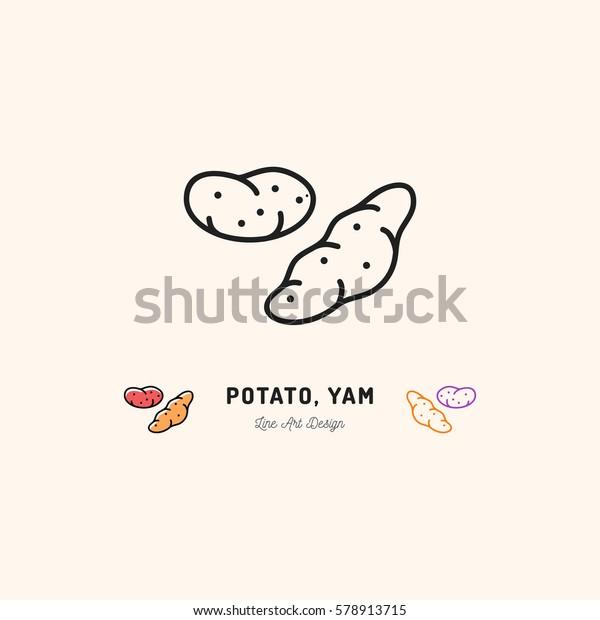 Potato Yam icon Vegetables logo. Thin line art design, Vector outline illustration
