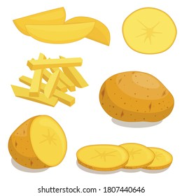 Potatoes isolated on background. Set of wedges, whole, slices, half, rings potatoes. Vector illustration top view