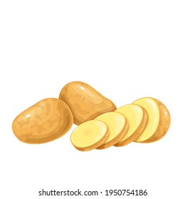 Potatoes vector illustration. Raw potato whole root crops and sliced pieces.
