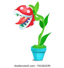 Potted fancy carnivorous flowering plant isolated on white background. Vector cartoon close-up illustration.
