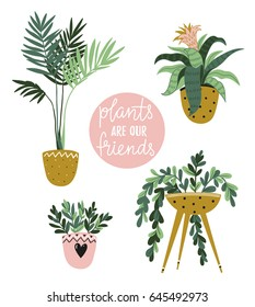Potted  house plants isolated on the white background. Vector illustration with stylish lettering - Plants are our fiends