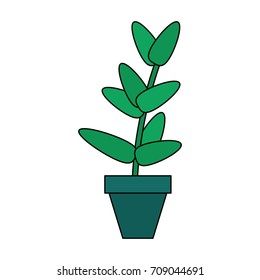potted plant icon image