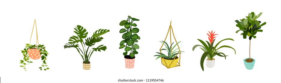 Potted Images, Stock Photos & Vectors | Shutterstock on