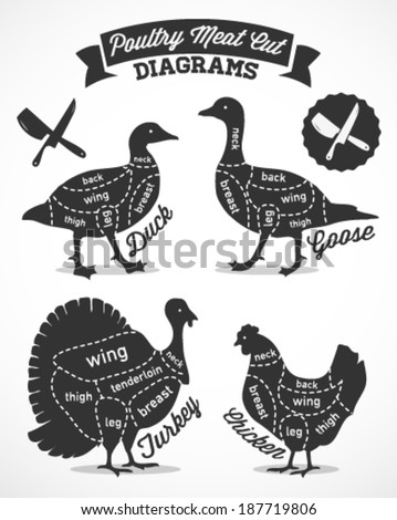 Poultry Cuts Diagram Vintage Style Stock Vector Royalty Free