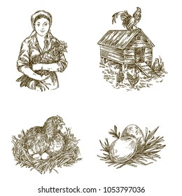 Poultry farm. Vintage set of elements. Woman with chicken, hen in nest, chicken house and eggs. Engraving style. Vector illustration.
