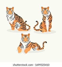 Powerful tiger in different actions set of cartoon vector Illustrations